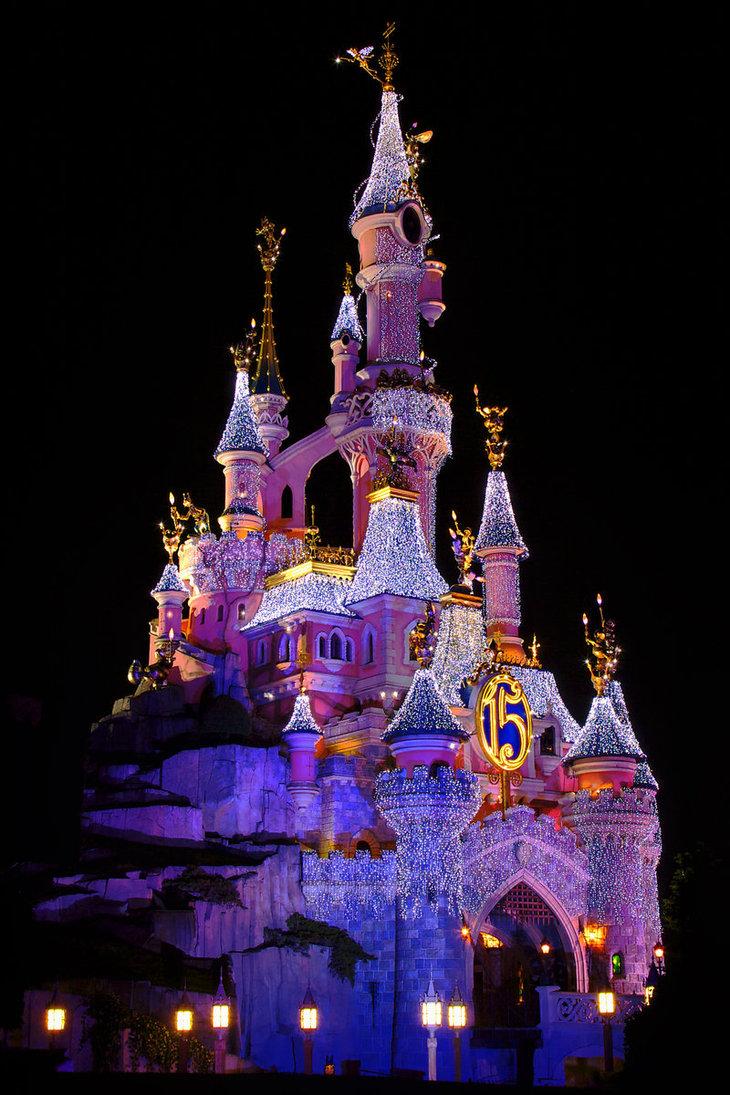 Disneyland Castle At Night Use